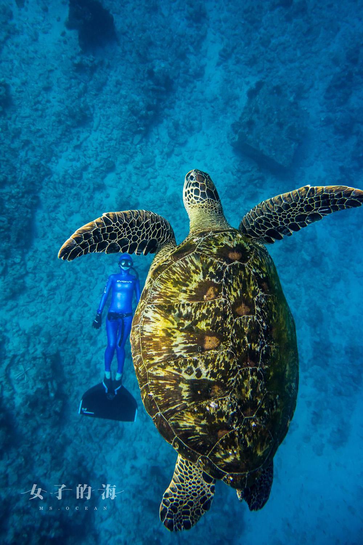 小琉球自由潛水