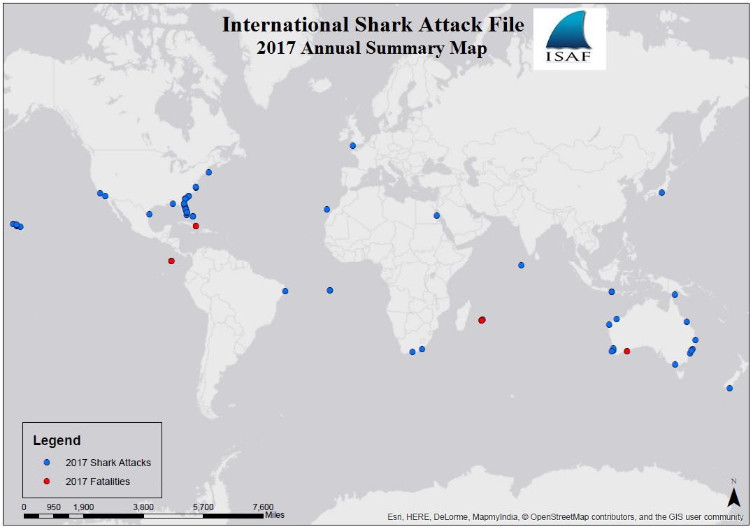 鯊魚攻擊地圖