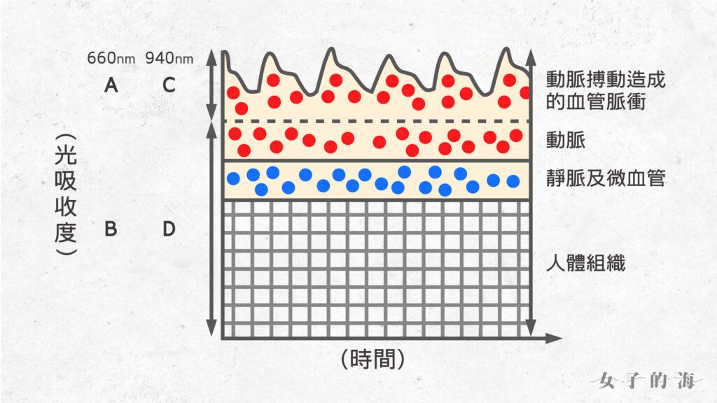 血氧計原理