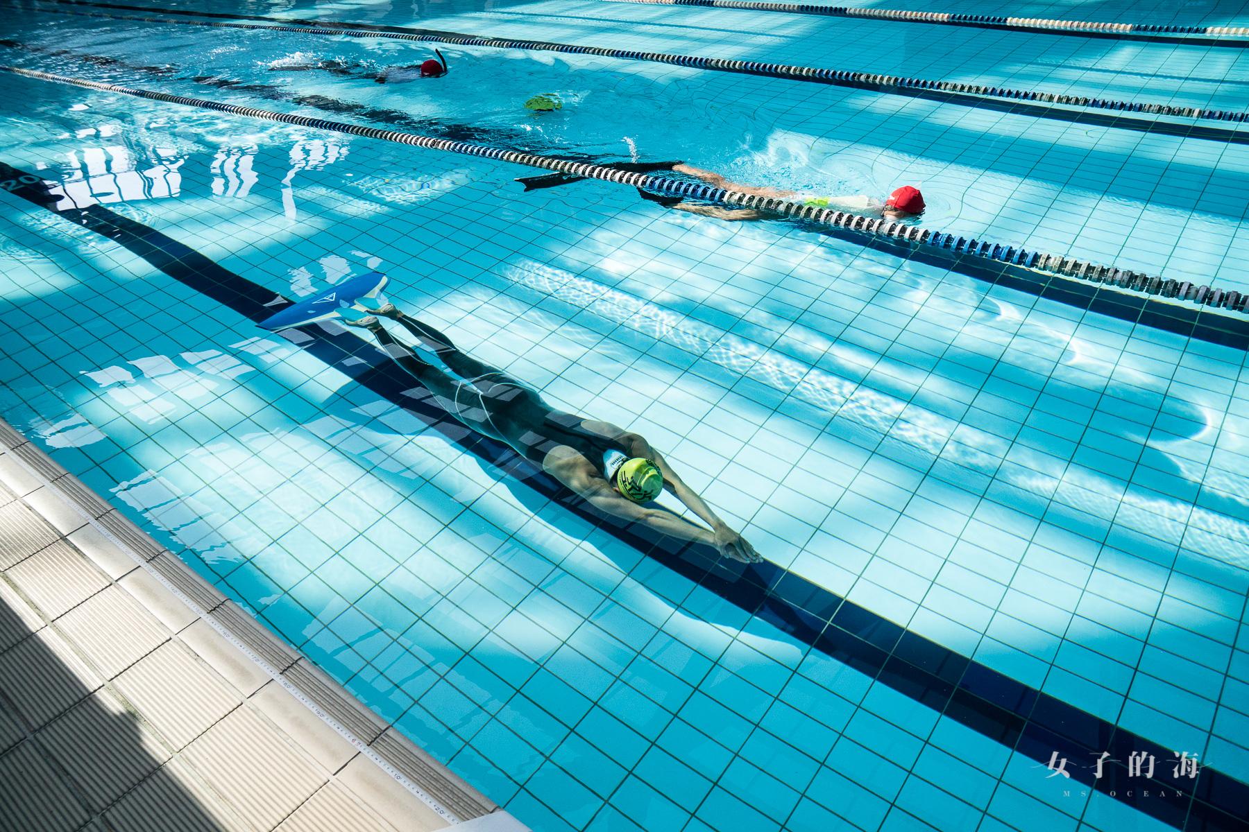 環太平洋自由潛水泳池賽裁判戒護