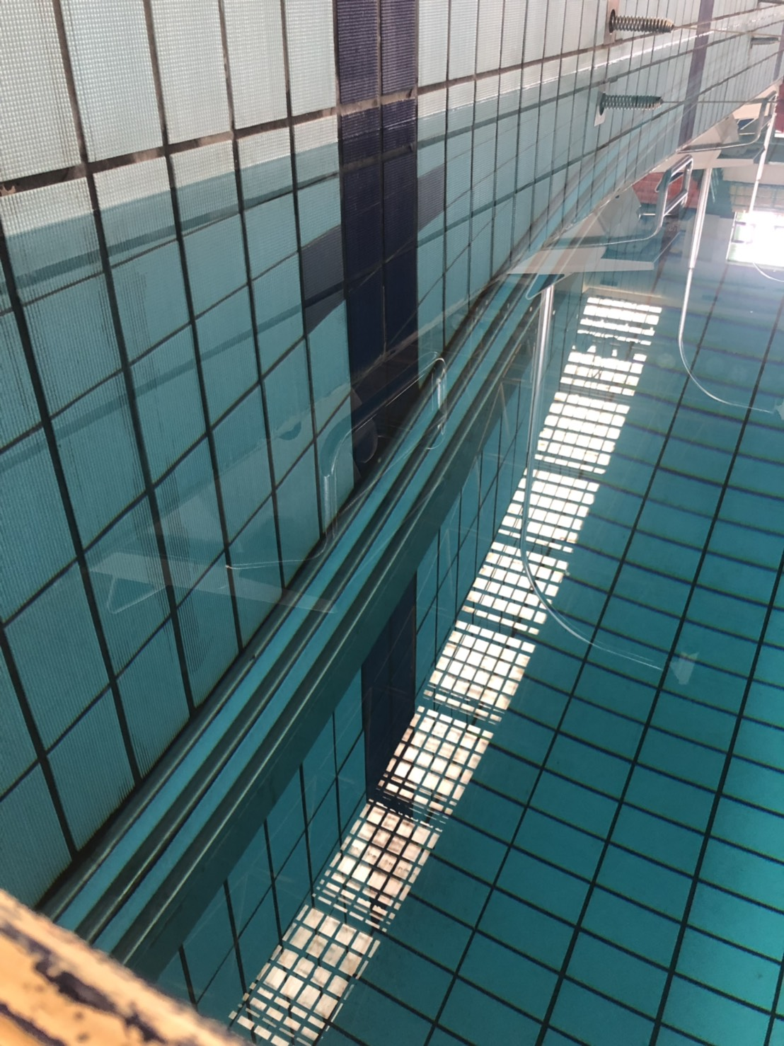 高雄國際游泳池
